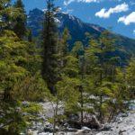 Kombiner forretningsrejsen til Argentina med en dejlig ferie